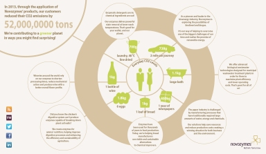 Promo infographic sample - Novozymes
