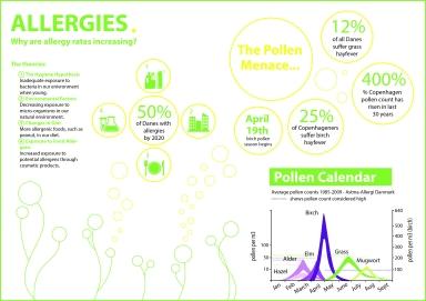 Allergy Infographic for The Copenhagen Post